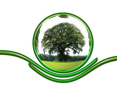Ocel a ekologie